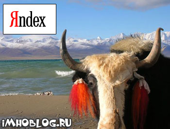 Яндекс Сюрприз