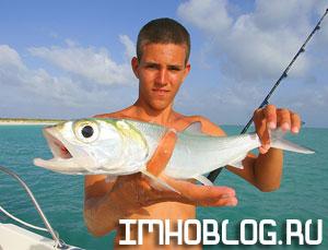 Чем Рыбаку Заняться В Интернет