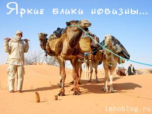 В Пустыню И Обратно